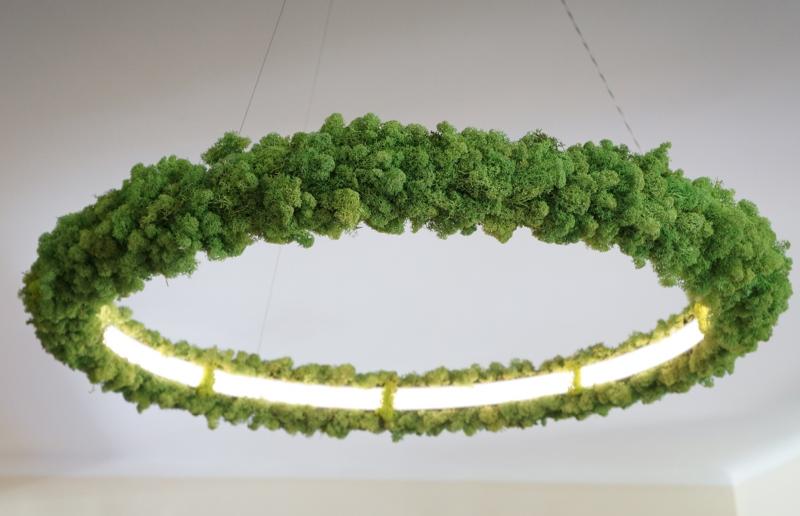Magyar izlandi zuzmós lámpa, amit a szoba-rénszarvasod is imádni fog
